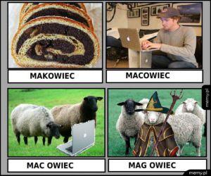 Makowce