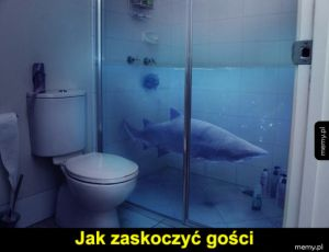Rekinek