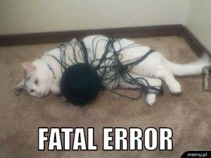 Błąd krytyczny