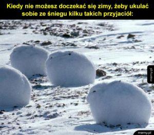 Zające polarne wyglądają jakby były ze śniegu