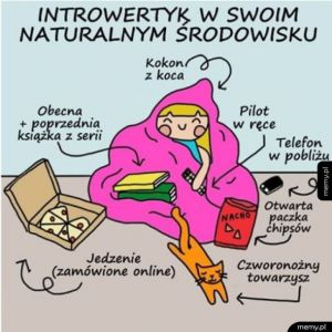 Życie introwertyka
