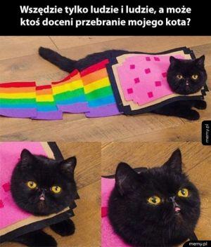 Halloweenowe przebranie koteła