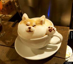 Kawowy pieseł