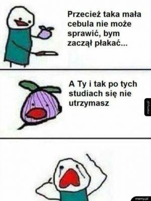 Historia pewnej cebuli