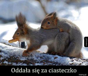 Wiewióry